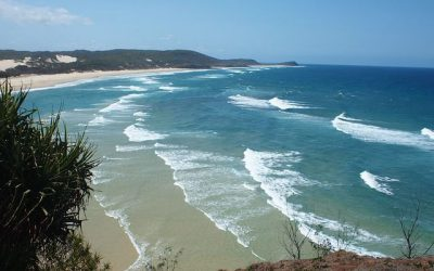 Make A Break – Head To Noosa!